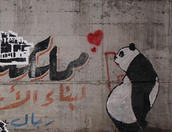 sad panda -november 2011