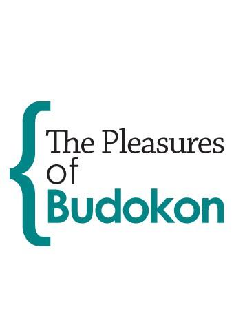 The Pleasures of Budokon