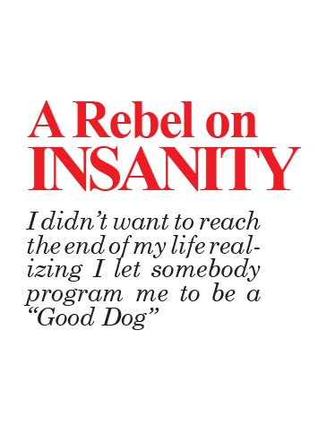 A Rebel on Insanity