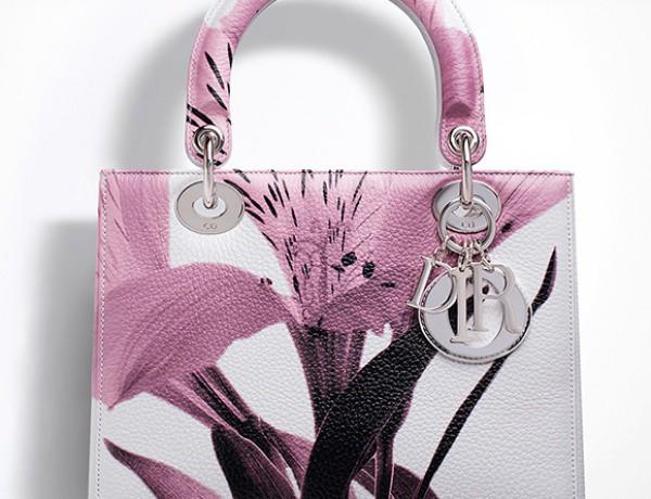 Lady Dior bag (Resized)