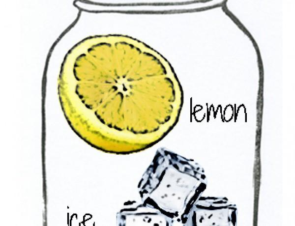 Dear Lemon Lima copy
