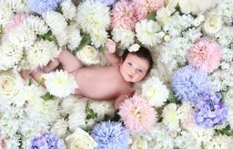 All Babies are Photogenique!