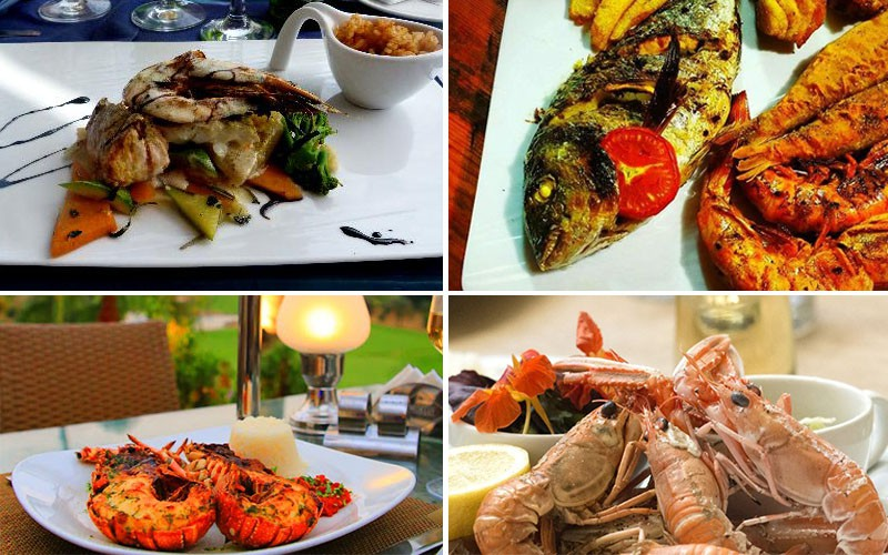 Your Guide to the Ultimate Aklet Samak in Egypt!
