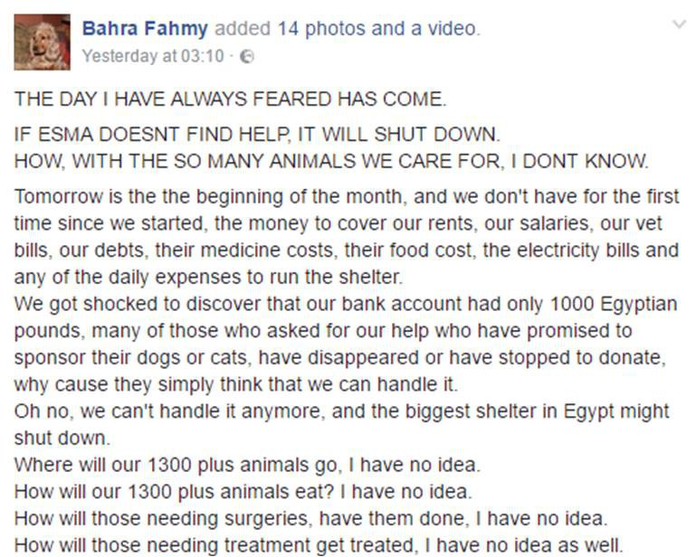 Facebook: Bahra Fahmy, for full post click here.