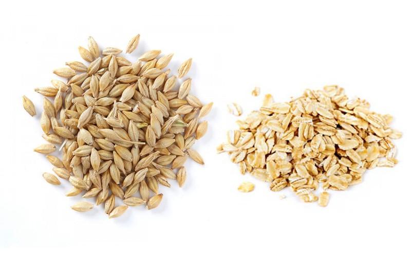 oats-barley