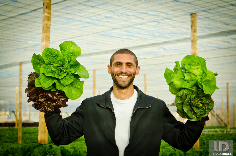 The Future of Egypt's Food: Egypt's Leading Hydro-farming Expert Explains All